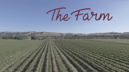 Alameda County – The Farm